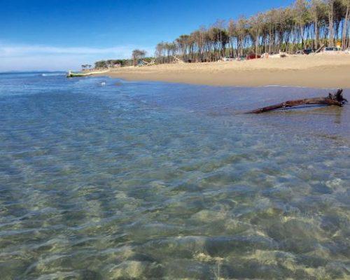 agriturismo alberese vicno al mare - last minute sett 3