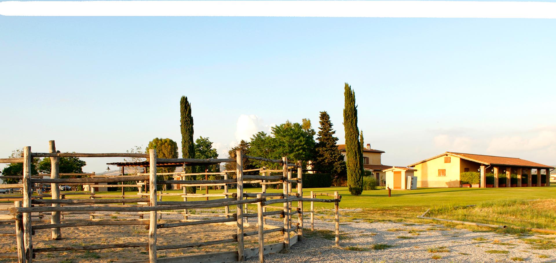 striscia-panorama