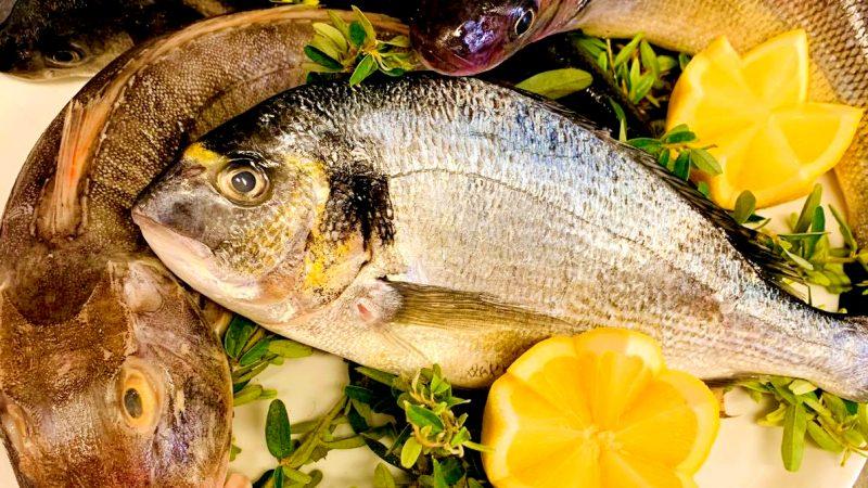 pescato-del-giorno